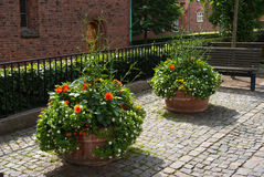 Street with flower pots Royalty Free Stock Images