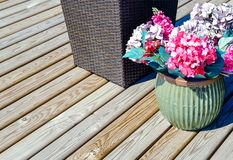 Outdoor flower pots flowers. On the porch. Home from a bar. Against the house flowers. Street flower pots flowers on stone wall background royalty free stock image