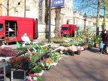 Street flower seller. Stock Photos
