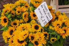 Street flower shop with beautiful sunflower bouquets Royalty Free Stock Image