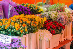 Street flower shop with colourful bouquets on the Grote Markt Stock Photos