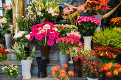 Street flower shop. With colourful flowers Stock Photography