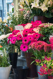Street flower shop Stock Images