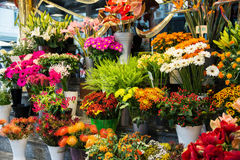 Street flower shop Royalty Free Stock Photo