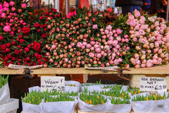 Street flower shop with colourful tulip bouquets Stock Photography