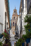 Street of Flowers in Cordoba in Spain Royalty Free Stock Images