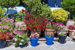 Street flowers decoration in Spain Royalty Free Stock Image
