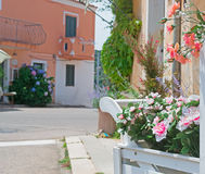 Street with flowers Royalty Free Stock Image