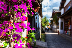 Street with flowers at Lijiang Stock Image