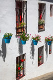 Street with flowers in the Mijas town, Spain Stock Photos