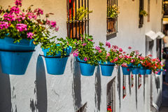 Street with flowers in the Mijas town, Spain Royalty Free Stock Image