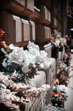 Street Flowers Royalty Free Stock Photo