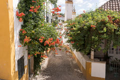 Street with flowers in Obidos Stock Photo