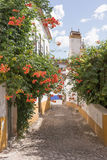 Street with flowers in Obidos Stock Images