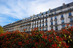 Street with flowers in Paris Stock Photos