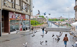 The street with flying pigeons Stock Photo