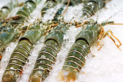 Street food in Asia spiny lobsters Stock Photo