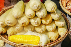 Street food in Burmese market , Myanmar. Boiled yellow corns in Burmese market, Myanmar. Myanmar is one of the mysterious country in South East Asia and because royalty free stock photography