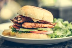 Street food fishburger. With fish cutlet and vegetables on white plate royalty free stock photos