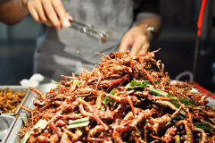 Street food - fried grasshoppers stock photos