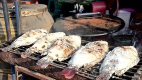 Street food, grilled fish stock video footage