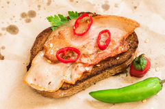 Street food on paper sandwich with bacon and chilli pepper. Top view royalty free stock photos