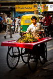 Street food seller selling oranges, Delhi, India Royalty Free Stock Photo