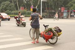 Street fruit seller with fruits on her bicycle Stock Photos