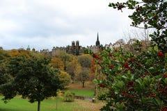Street Garden和老爱丁堡地平线王子用莓果 免版税库存照片