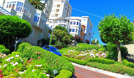 Street Gardens San Francisco Stock Photography