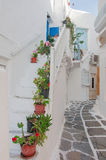 Street of Greek island with stairs and flowers. Stock Photo