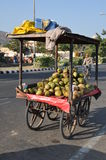 Street Hawker in Jaipur, India Stock Photography