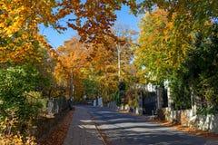 Street in Heringsdorf Royalty Free Stock Image