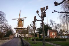 Street in Holland with windmill Royalty Free Stock Image