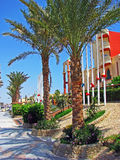 Street in Hurghada Stock Photography