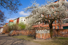 Street inold town of Torun, Poland Royalty Free Stock Image