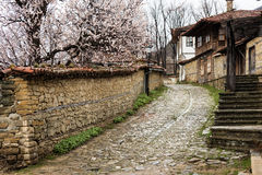 Street of Jeravna, village in Bulgaria, Europe. Old street of Jeravna, village in Bulgaria, Europe Royalty Free Stock Photography