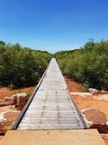 Broome Western Australia old Short Street jetty and mangroves Royalty Free Stock Photography