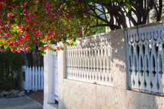 Street in Key West. View of white ornate fence with blooming purple bougainvillea in Key West, Florida Keys, USA royalty free stock photo