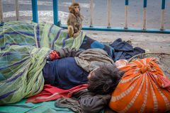 Street kid sleeps on the pavement of a city street in Kolkata while his pet monkey keeps a vigilance. Royalty Free Stock Photography