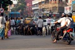 Street Of Kolkata Royalty Free Stock Photos