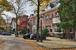 Street Koningslaan in the center of Amsterdam. Netherlands. Royalty Free Stock Photos