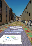 Street of La laguna with flower carpets Stock Photos