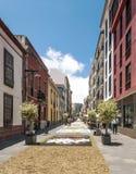 Street of La laguna with flower carpets Stock Photography