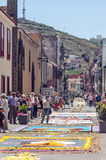 Street of La laguna with flower carpets Stock Photo