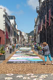 Street of La laguna with flower carpets Royalty Free Stock Image