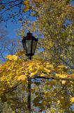 Street lamp. Framed by autumn leaves Royalty Free Stock Images