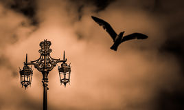 Free Street Lamp Stock Images - 41918584