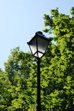 Street Lamp Against Sunny Summer Royalty Free Stock Photo