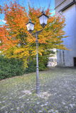 Street lamp with autumn leaves Royalty Free Stock Photo